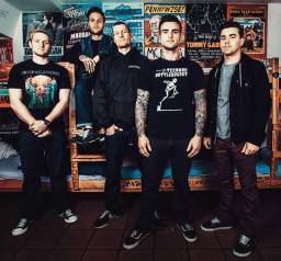 Stick To Your Guns - Married To The Noise